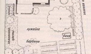 Планировка дачного участка: актуальные советы